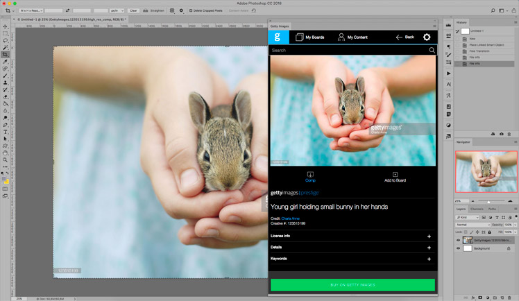 Best Stock Photo Plugins | Getty Images Plugin for Creative Cloud